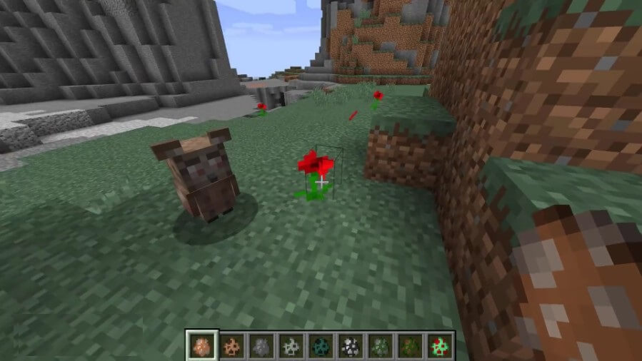 Ender-Zoo-Mod-Screenshots-2.jpg